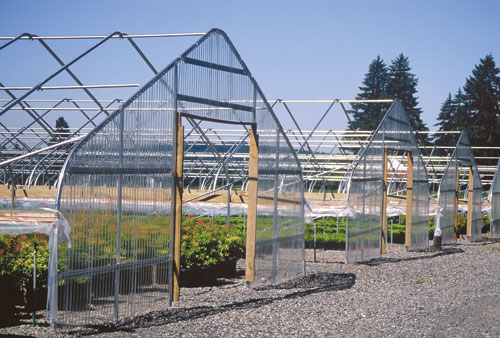 obc 30 semi gable greenhouse frame
